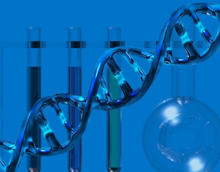 polish el dorado of molecular biology poland pl